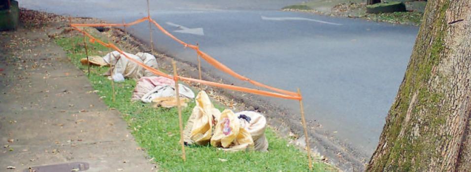Vecinos piden que terminen siembra en El Poblado