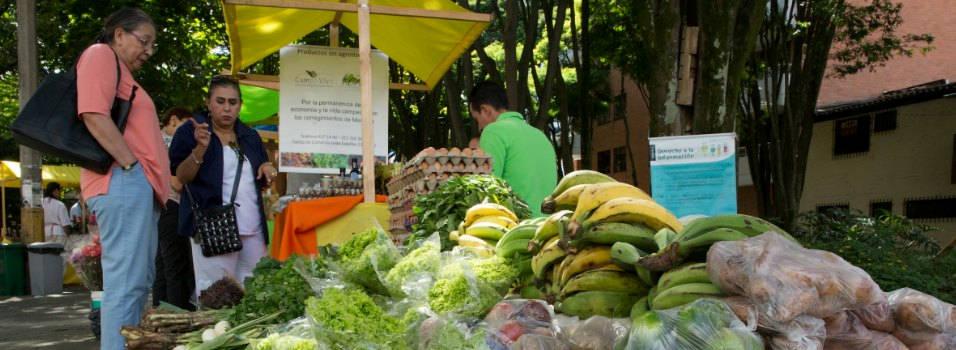Feria de la Sostenibilidad y la Alimentación Saludable