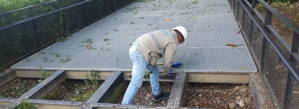 Inicia reparación de los senderos elevados de Parques del Río