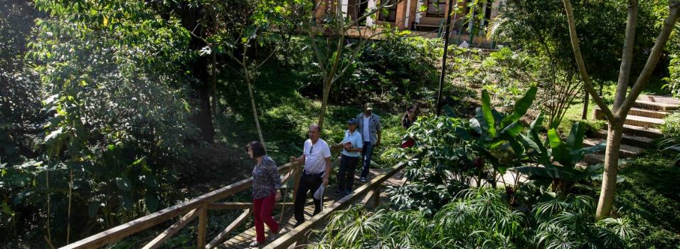 La Guayacana: el nuevo parque de Envigado