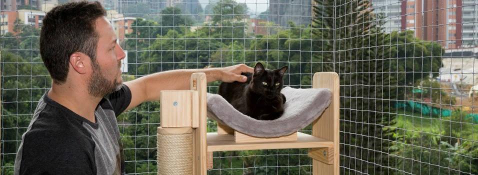 ¿Las mallas en apartamentos le quitan libertad a los gatos?