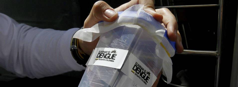 ¿Por qué liberaron mosquitos transmisores del dengue en El Poblado?