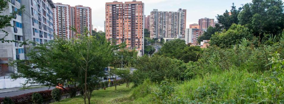 Polémica en Los Bernal por plan de vivienda popular