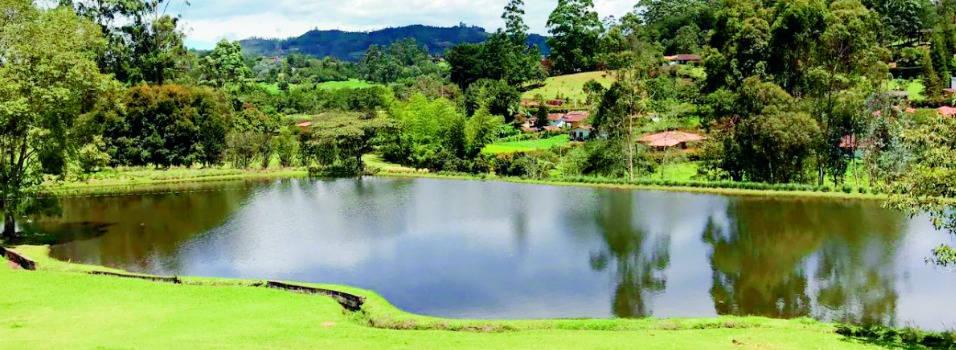 Colegio Montessori tendrá otra sede en Rionegro