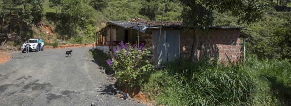 Vivero municipal será trasladado a Altavista