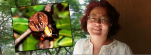 Claudia, la vecina que defiende a los murciélagos