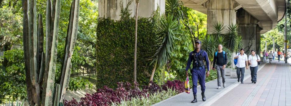 Crean jardines verticales en el viaducto del metro