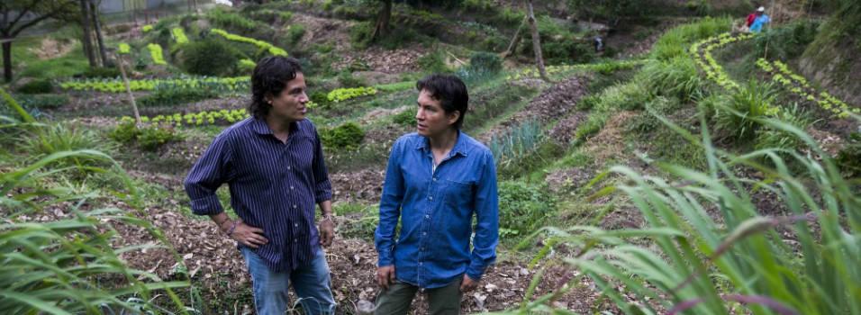 """""""Dentro de Medellín es posible la sostenibilidad ambiental"""""""