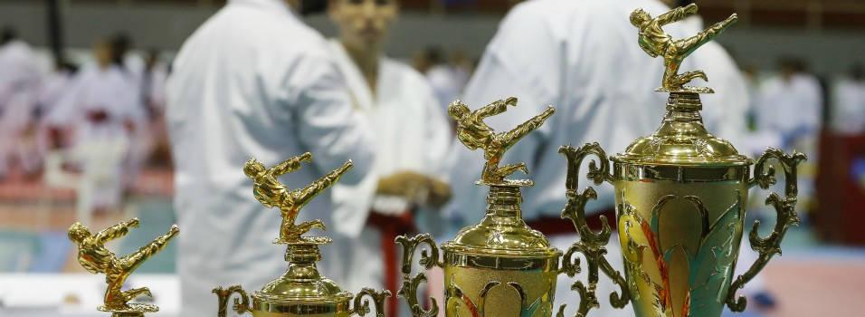 Envigado pateó fuerte en el nacional de karate