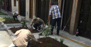 En Envigado cambian el cemento por zonas verdes
