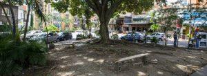 Segundo Parque de Laureles pide a gritos más cuidado