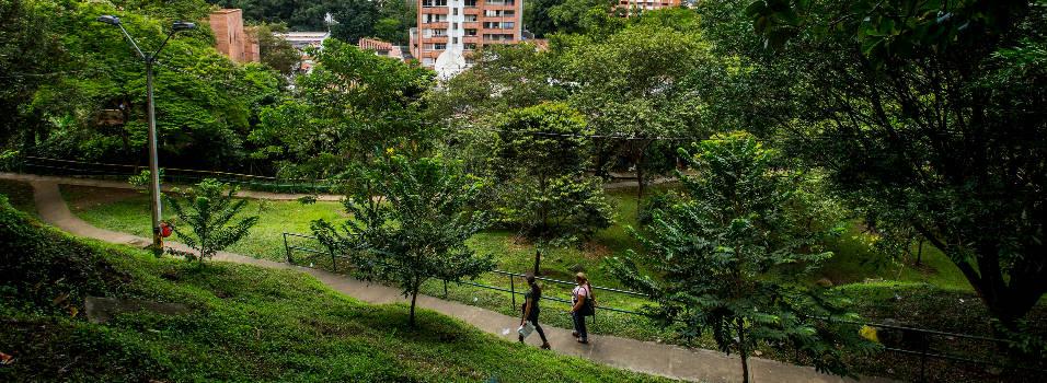 Siete parques de El Poblado serán intervenidos