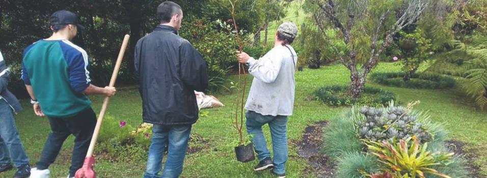Comunidad de Envigado se sigue sumando a la tarea de reforestar