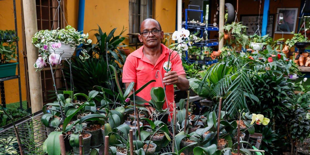 En Envigado hay una clínica de orquídeas