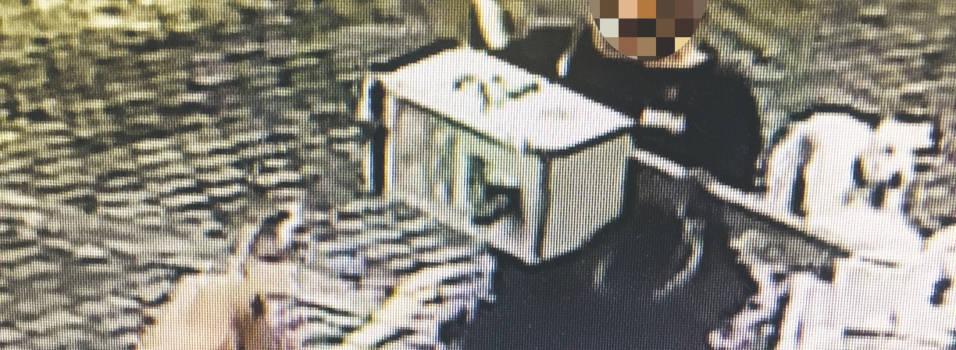 Paseador arrancó un dispensador de bolsas y lo arrojó a una portería