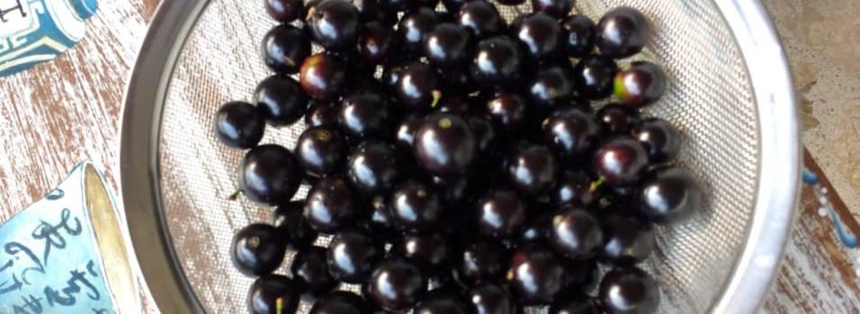 En Miravalle los vecinos están felices con los frutos de jabuticaba