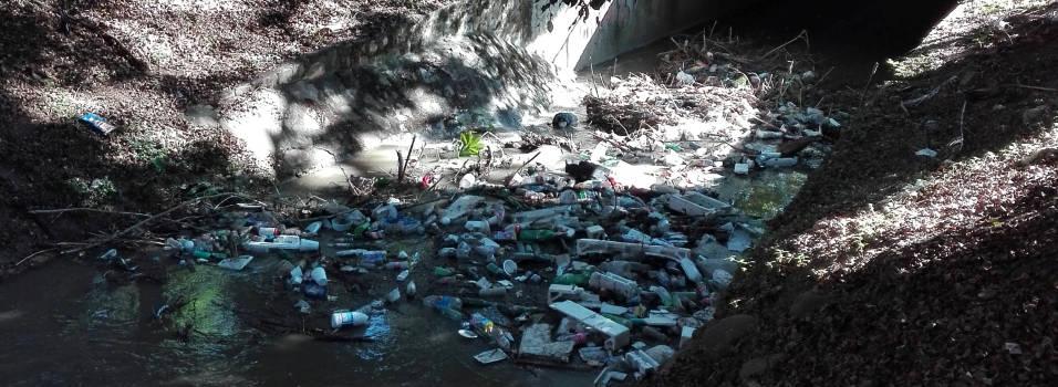Es lamentable el estado de La Picacha