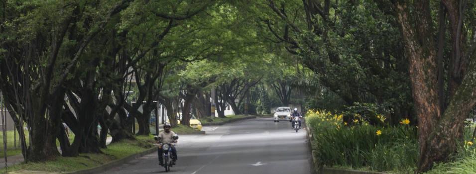 Una nueva propuesta para el túnel verde de Envigado