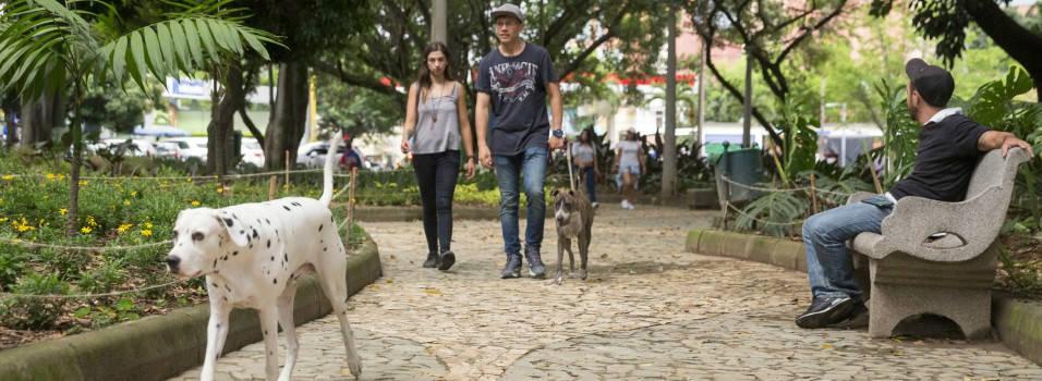 Pocos usan la nueva zona de mascotas del primer parque de Laureles
