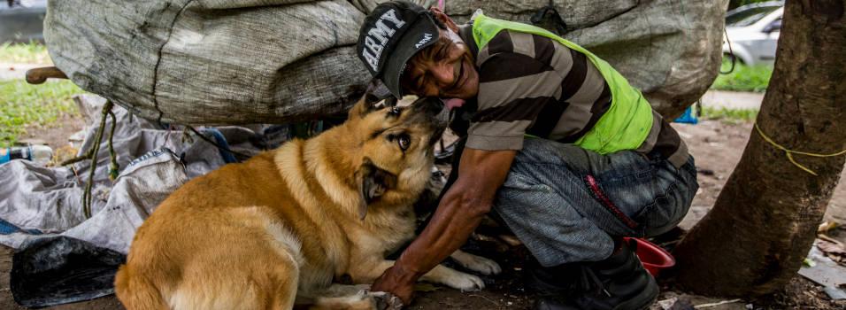Aurelio, el perro callejero de Belén que los fines de semana tiene un hogar