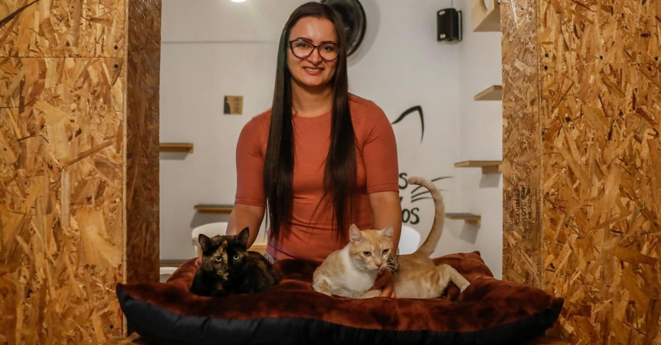 El primer café de gatos de Medellín celebra su primer año