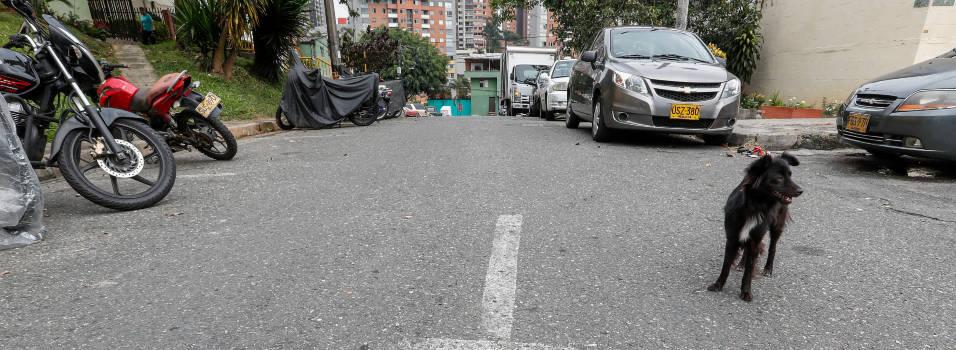 En Balcones de la Serranía falta señalización y cultura vial