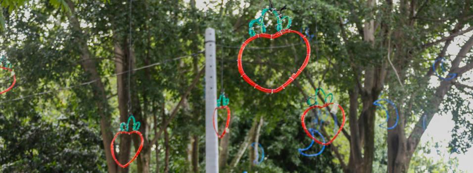 Este año el alumbrado navideño de Medellín es más modesto