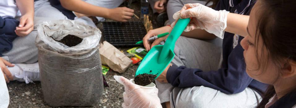 Estudiantes de Laureles crearán 14 jardines en parques del sector