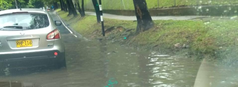 Denuncian inundaciones en la 80 por taponamiento