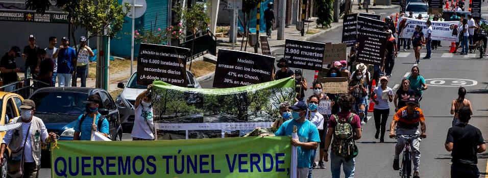 En qué van los recursos legales para frenar la tala del túnel verde