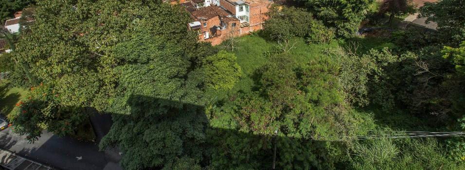 Medidas cautelares para proteger el humedal de Los González