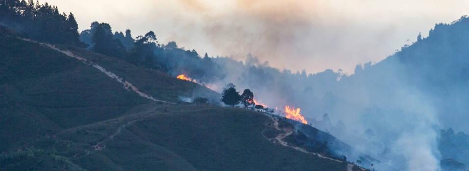 Van 14 incendios forestales en los cerros de Belén