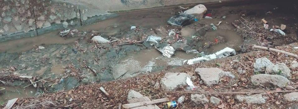 Vecino pide que limpien La Picacha