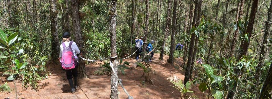 Denuncian otro robo masivo en zona rural de Envigado