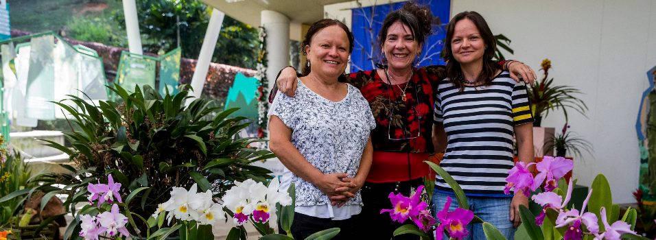 Orquídeas sembradas por nuestros vecinos de Envigado