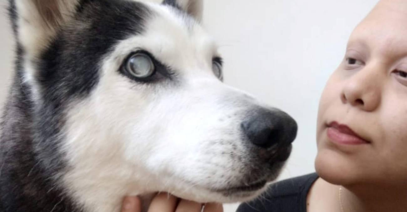 Historia de perro maltratado de Medellín que se quedó ciego