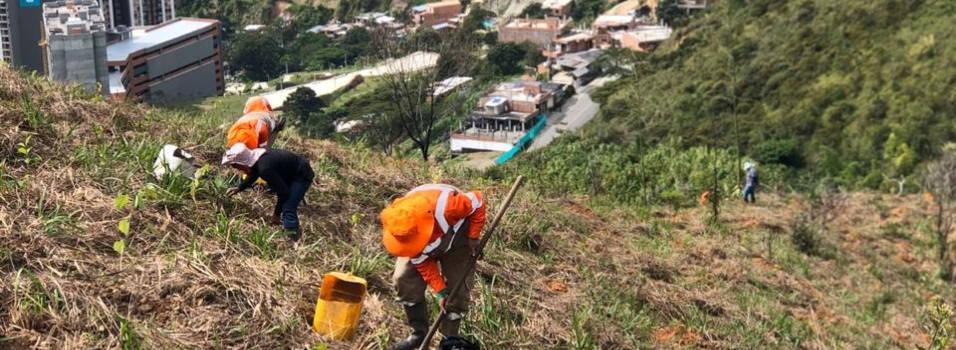 Obras del ecoparque en el cerro de Las Tres Cruces en Medellín